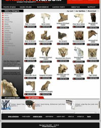 PX-Website-Designer-Port-013